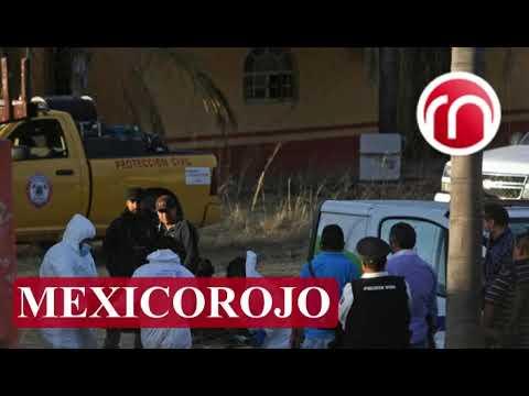 Cuerpos sin identificar en Jalisco: entre los más de 800 restos hay niños